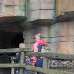 Zoo 2017 (182)