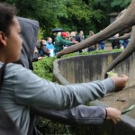 Zoo 2017 (42)