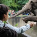 Zoo 2017 (44)