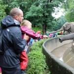 Zoo 2017 (55)